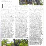 Saevus Magazine